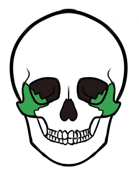 Zygomatic bones in mewing